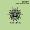 Couverture de l'album Broken Hopes / Incarnate - Single
