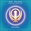 Couverture de l'album Adi Shakti