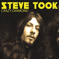 Cover of the track Crazy Diamond