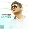 Cover of the album Nazanin - Single