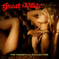 Cover of the track The Essential Collection