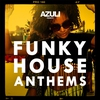 Couverture de l'album Azuli Presents Funky House Anthems