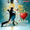 Couverture de l'album I Love Salsa 2011 (15 Salsa Hits)