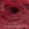 Couverture de l'album Oweynagat - Single