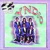Cover of the album Serie 32: Yndio