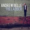 Couverture de l'album The Ladder