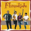 Cover of the album Flamenkinho