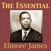 Couverture de l'album The Essential Elmore James