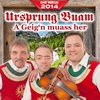 Couverture de l'album Ursprung Buam - A Geig'n muass her