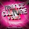 Couverture de l'album Trance Culture Vol.1