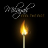 Couverture de l'album Feel the Fire - Single