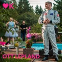 Couverture du titre Ärtukuningas - Single