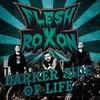 Couverture de l'album Darker Side Of Life