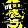 Couverture de l'album Before You Were Punk: 28 Punk Classics