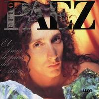 Cover of the track El amor después del amor