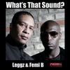 Couverture de l'album Whats That Sound (feat. Femi B) - EP