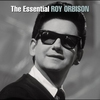 Cover of the album The Essential Roy Orbison