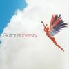 Couverture de l'album Honeysky