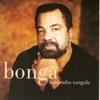 Couverture de l'album Mulemba xangola