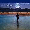 Cover of the album Hello Moon