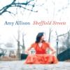 Couverture de l'album Sheffield Streets