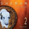 Cover of the album Shaman 2