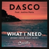 Cover of the album What I Need (Right Here, Right Now) [feat. Justina Maria] - EP