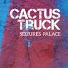 Couverture de l'album Seizures Palace