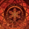Cover of the album The Ancient Secret of the Flower of Life (Extended Version)