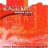 Couverture de l'album Caliente Havana Salsa, Vol. 1