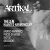 Cover of the album Haunted Harmonics EP