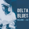 Couverture de l'album Delta Blues - 1951