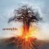 Cover of the album Skyforger (Exclusive Bonus Version)