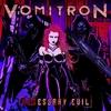 Cover of the album NESessary Evil