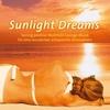 Couverture de l'album Sunlight Dreams