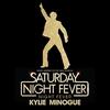 Couverture du titre Night Fever