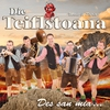 Cover of the album Die Teiflstoana - Des san mir