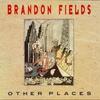 Couverture de l'album Other Places