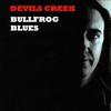 Couverture de l'album Bullfrog Blues