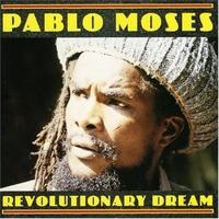 Cover of the track Revolutionary Dream