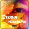 Cover of the album Never See You - Single
