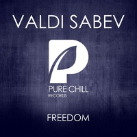 Cover of the track Freedom - Single
