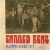 Couverture de l'album Illinois Blues 1973 (Live)