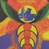 Couverture de l'album Sweet Honey