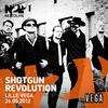 Couverture de l'album Live at Lille Vega 2012