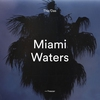Cover of the album Miami Waters - Single