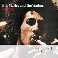 Couverture du titre Catch a Fire (Deluxe Edition)