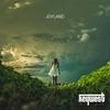 Cover of the album Joyland