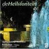 Couverture de l'album De Heilsfontein