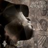 Couverture de l'album Winter Mornings (feat. Suns of Dub) - Single